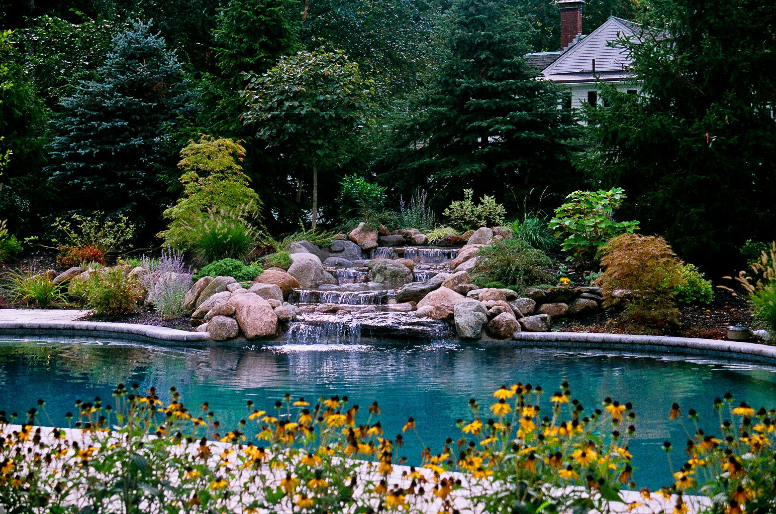 Willing Landscape Pools And Landscaping Ideas Houston Tx