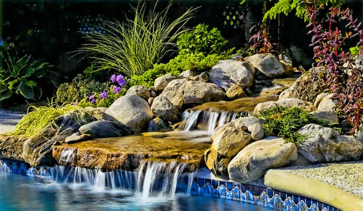 Poolside Water Garden