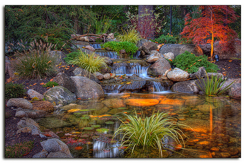 water garden with dramatic night lighting