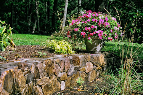 field stone wall with flowers